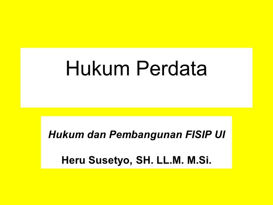 Hukum dan Pembangunan FISIP UI Heru Susetyo, SH. LL.M. M.Si.