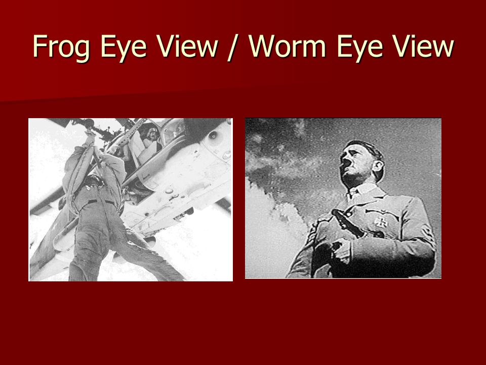 Frog Eye View / Worm Eye View
