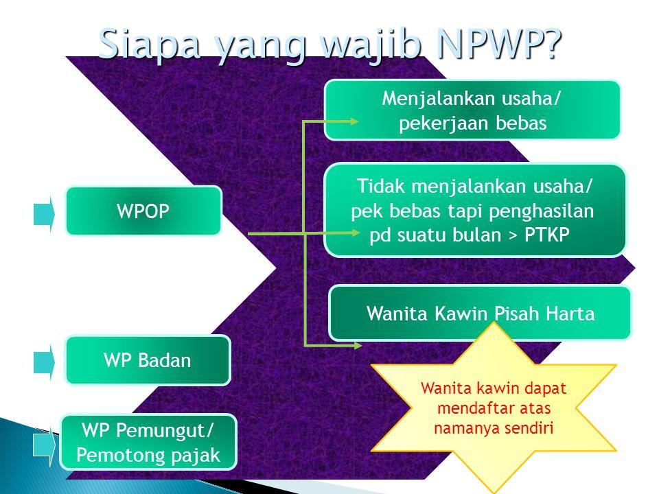 Siapa yang wajib NPWP Menjalankan usaha/ pekerjaan bebas