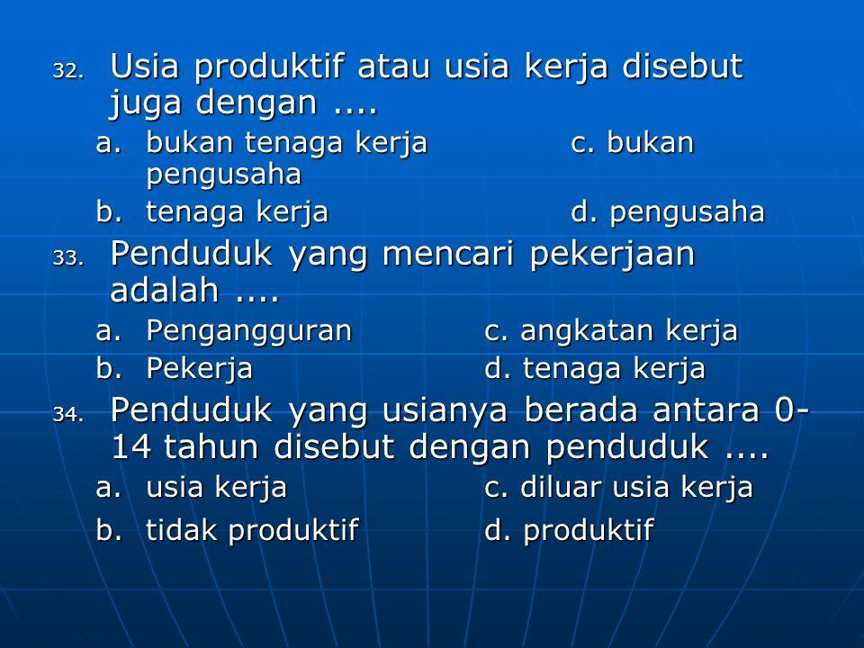 Usia produktif atau usia kerja disebut juga dengan ....