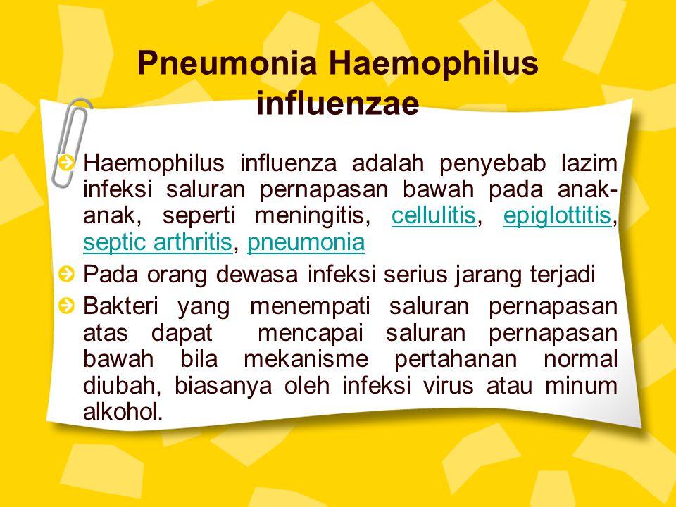 Pneumonia Haemophilus influenzae