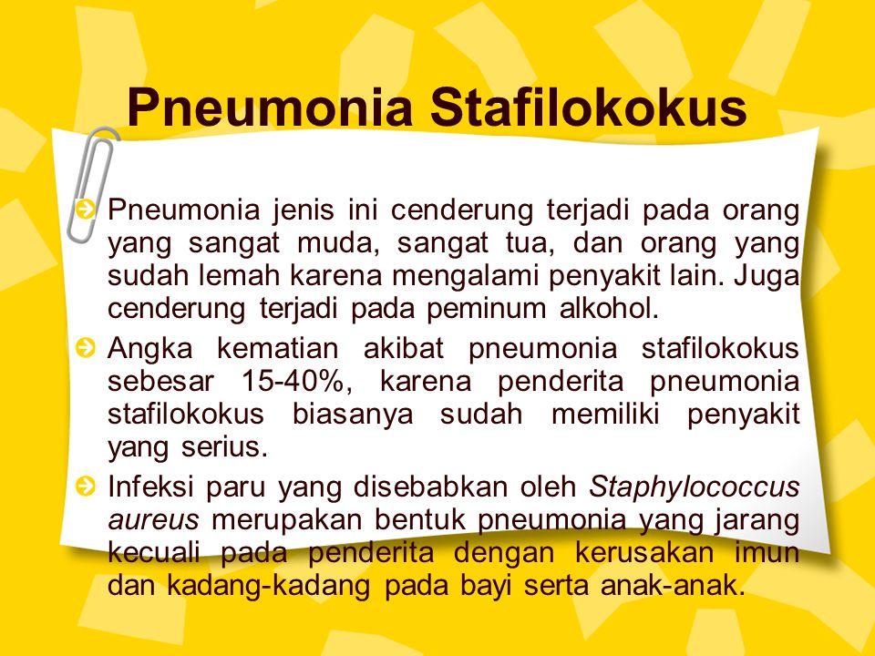 Pneumonia Stafilokokus