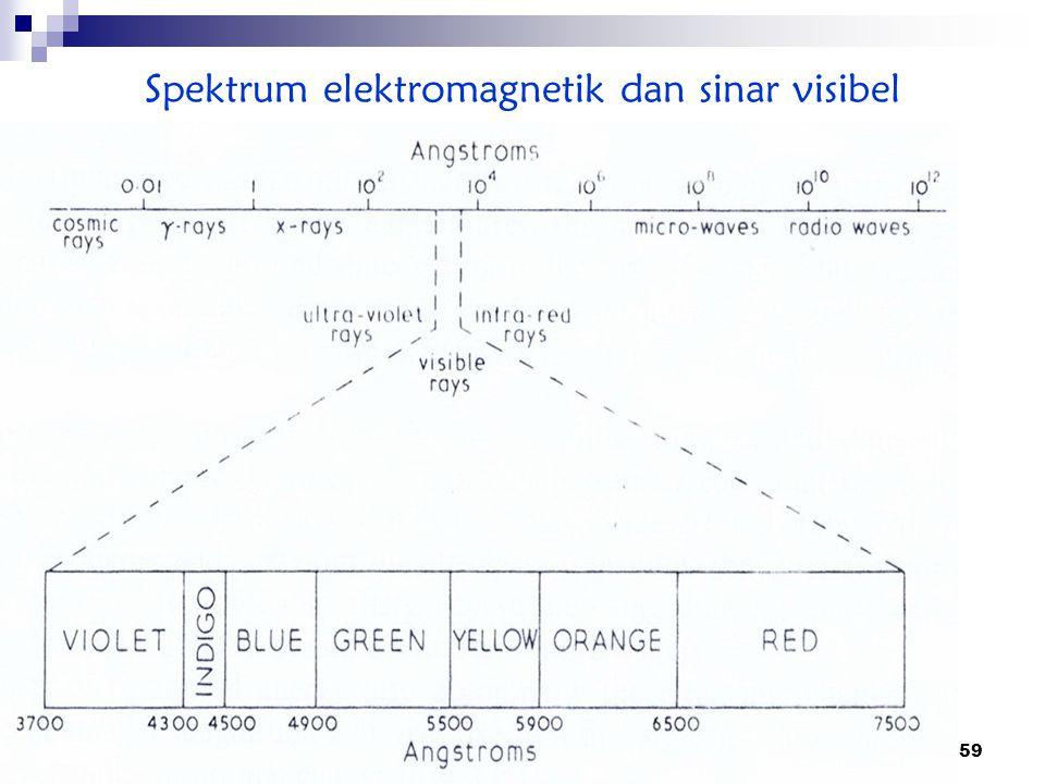 Spektrum elektromagnetik dan sinar visibel