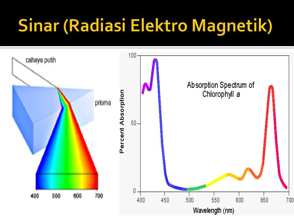 Sinar (Radiasi Elektro Magnetik)