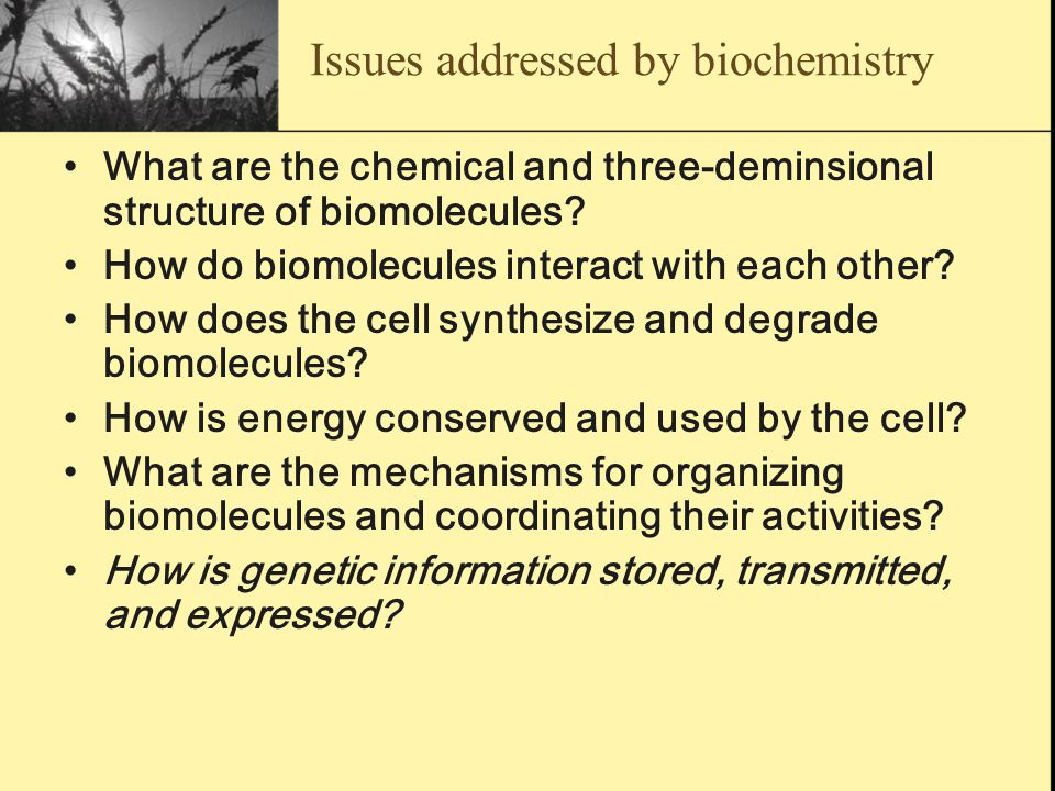 Issues addressed by biochemistry