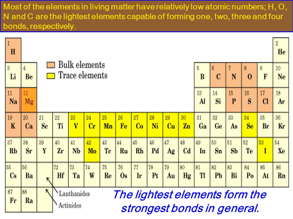 The lightest elements form the strongest bonds in general.