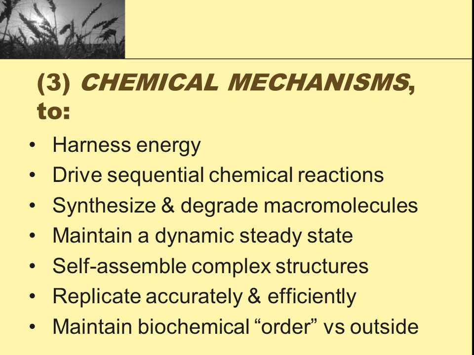 (3) CHEMICAL MECHANISMS, to: