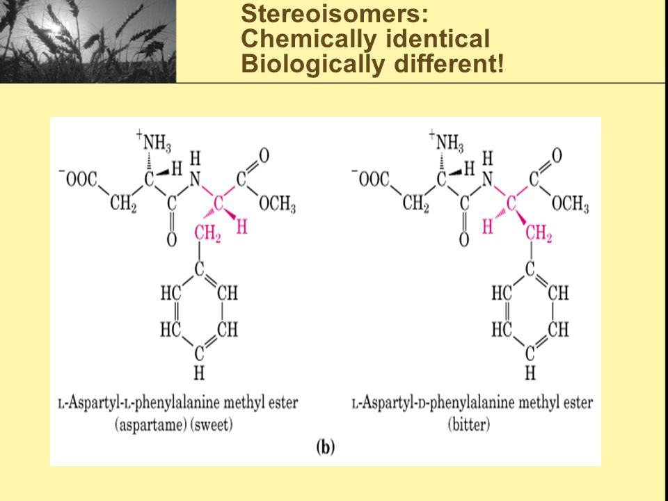 Stereoisomers: Chemically identical Biologically different!