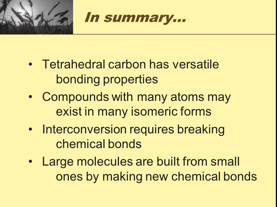 In summary… Tetrahedral carbon has versatile bonding properties
