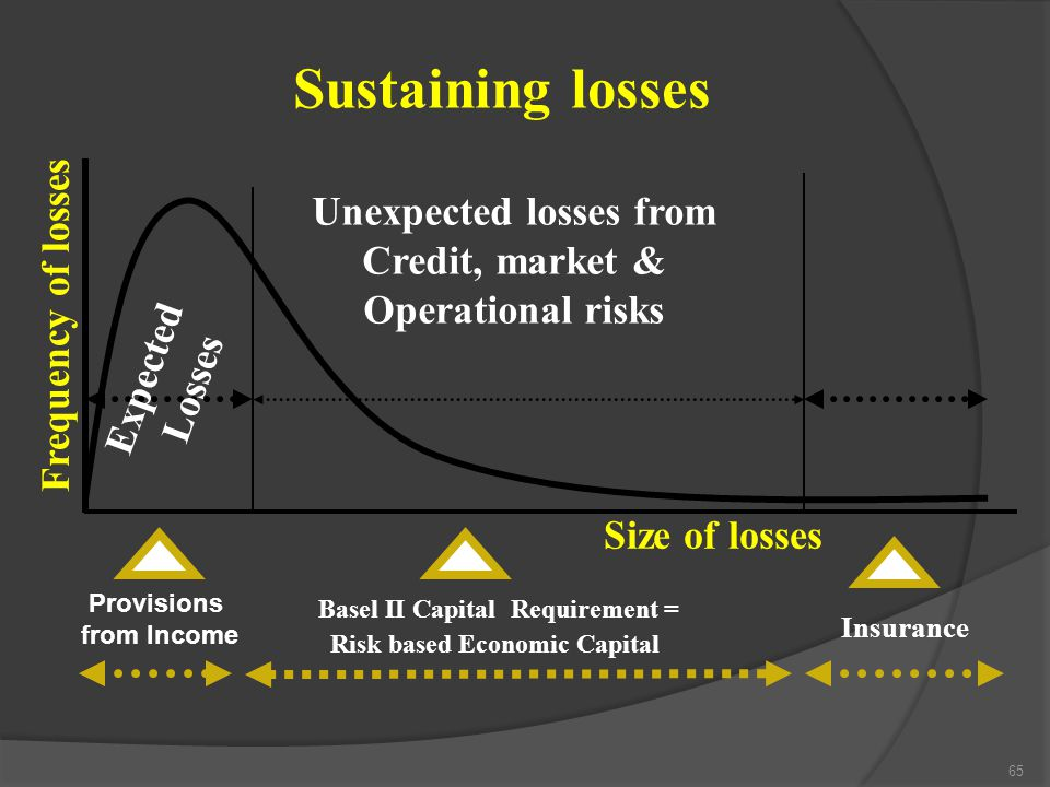Sustaining losses Basel II Capital Requirement =
