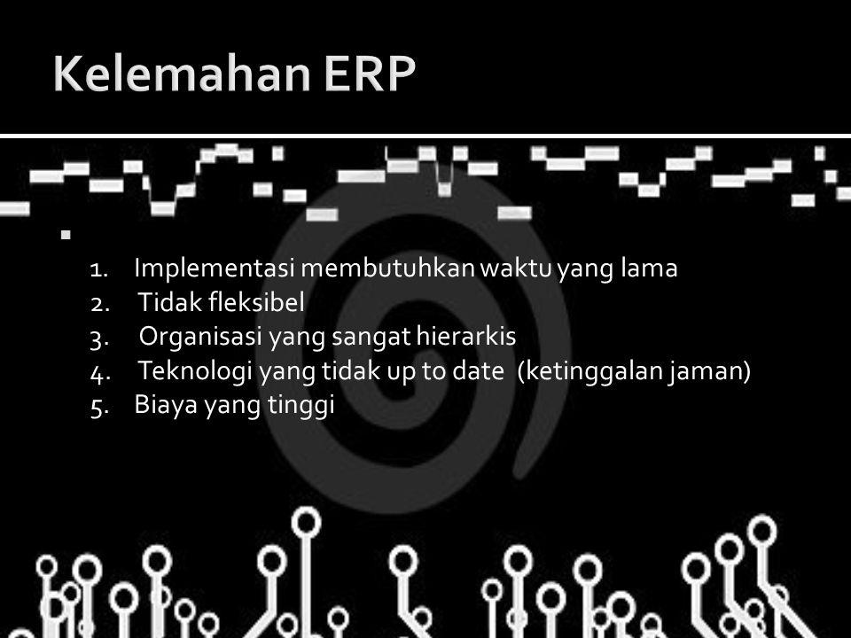 Kelemahan ERP