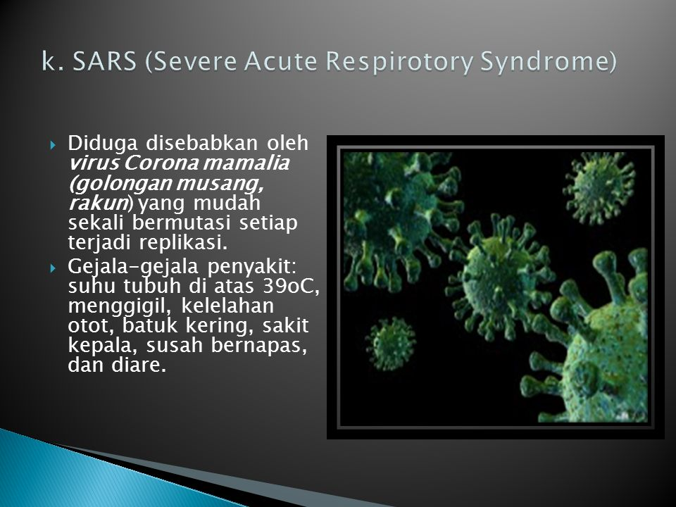 k. SARS (Severe Acute Respirotory Syndrome)