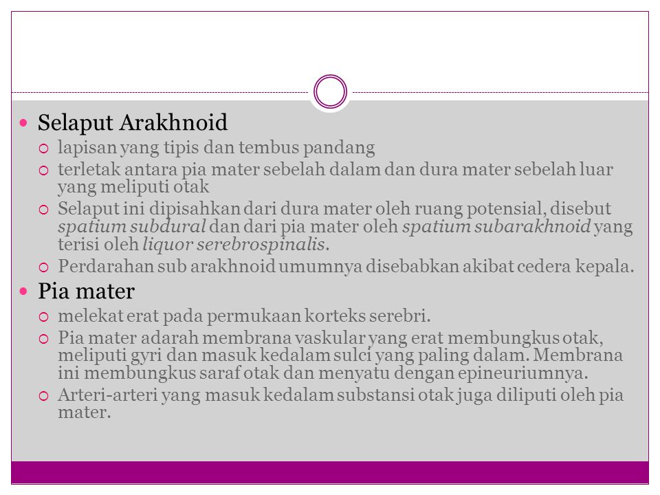 Selaput Arakhnoid Pia mater lapisan yang tipis dan tembus pandang