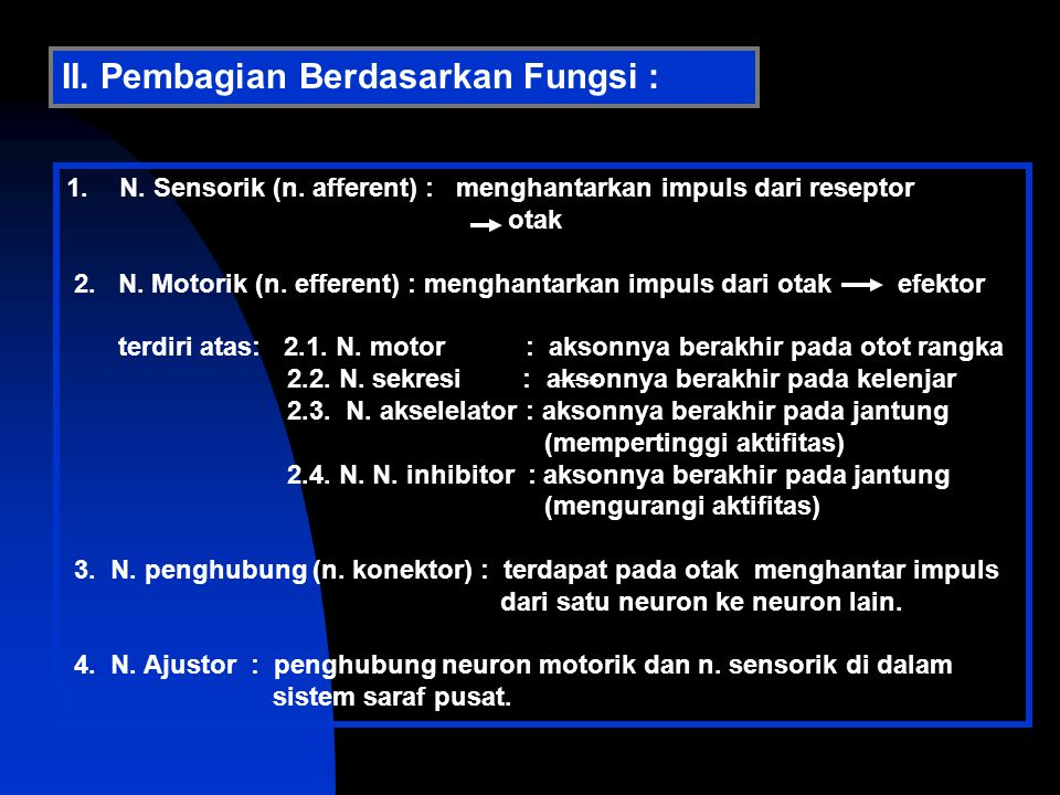 II. Pembagian Berdasarkan Fungsi :