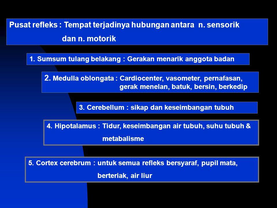 Pusat refleks : Tempat terjadinya hubungan antara n. sensorik