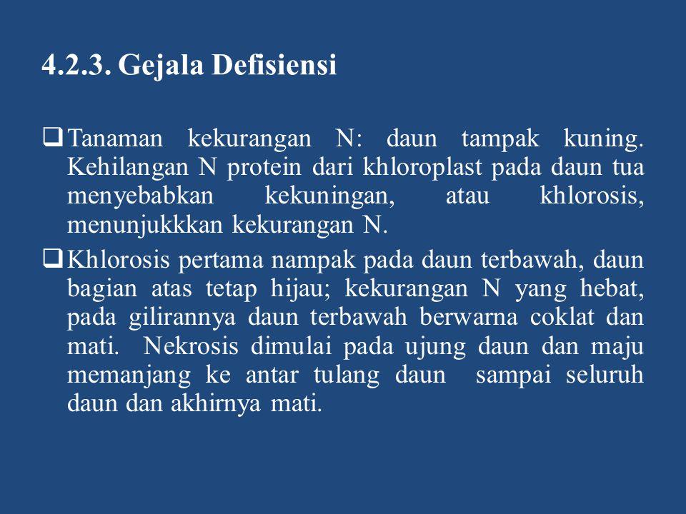 4.2.3. Gejala Defisiensi