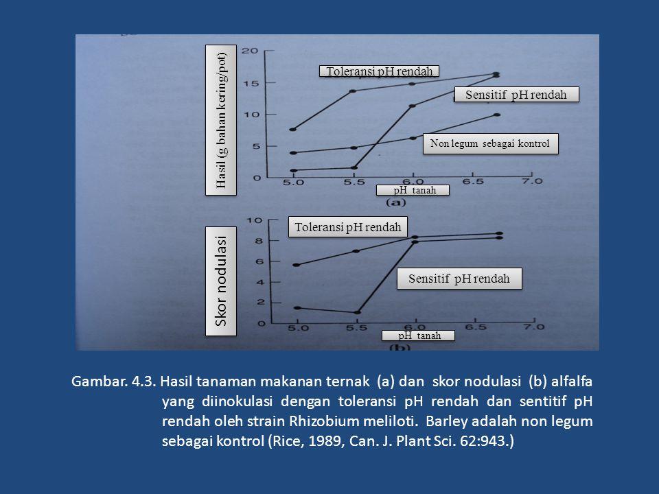 Toleransi pH rendah Sensitif pH rendah. Hasil (g bahan kering/pot) Non legum sebagai kontrol. pH tanah.