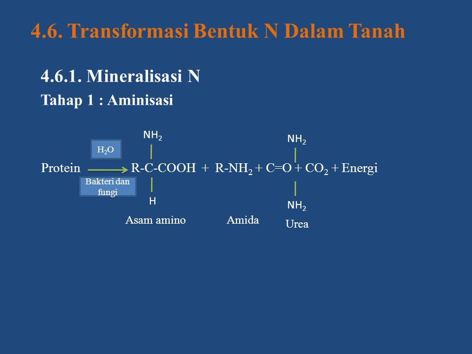 4.6. Transformasi Bentuk N Dalam Tanah
