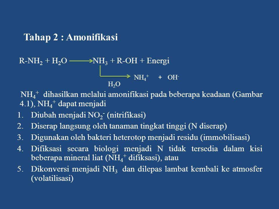R-NH2 + H2O NH3 + R-OH + Energi
