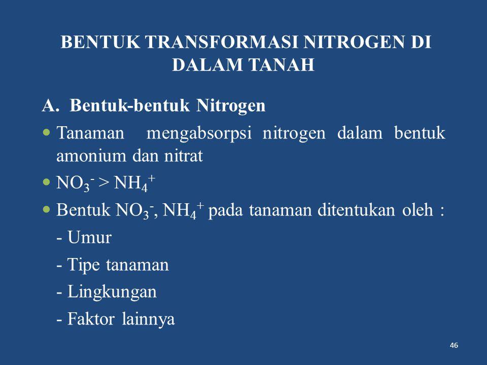 BENTUK TRANSFORMASI NITROGEN DI DALAM TANAH