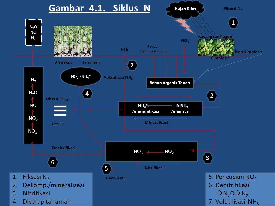 Gambar 4.1. Siklus N 1 7 4 2 3 6 5 Fiksasi N2 5. Pencucian NO3-