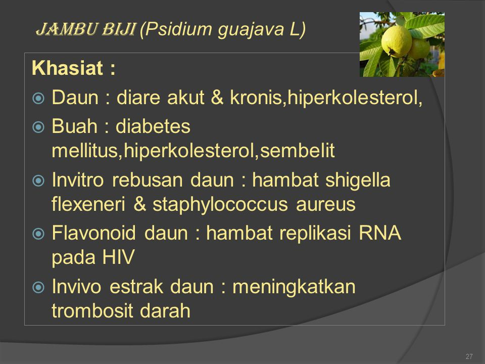 Daun : diare akut & kronis,hiperkolesterol,
