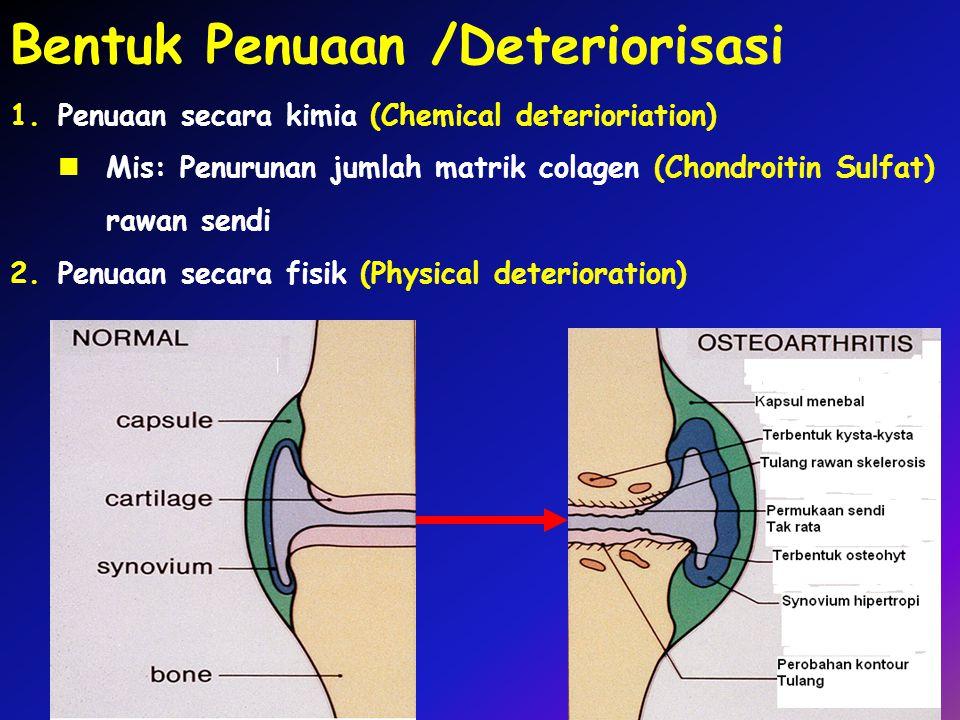 Bentuk Penuaan /Deteriorisasi