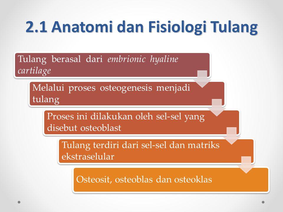 2.1 Anatomi dan Fisiologi Tulang