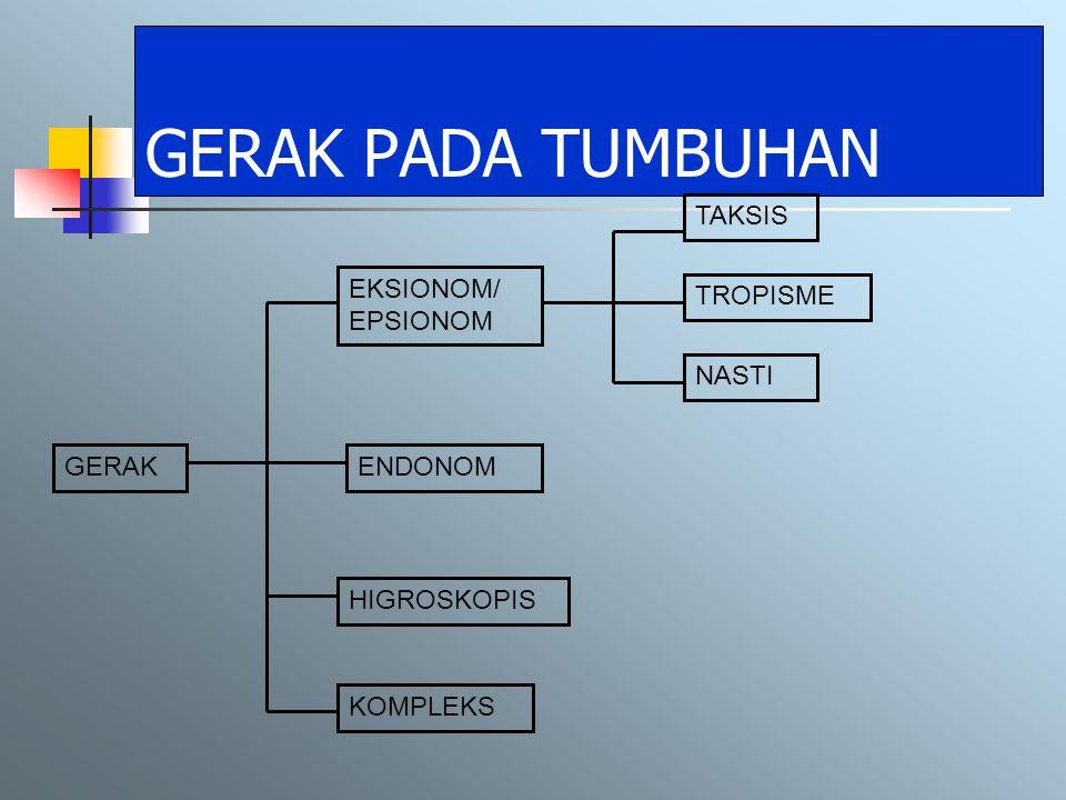 GERAK PADA TUMBUHAN TAKSIS EKSIONOM/ EPSIONOM TROPISME NASTI GERAK