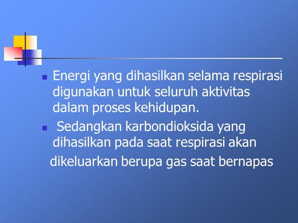 Energi yang dihasilkan selama respirasi digunakan untuk seluruh aktivitas dalam proses kehidupan.