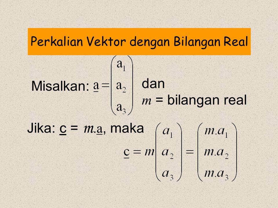 Perkalian Vektor dengan Bilangan Real
