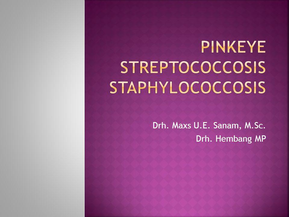 PINKEYE STREPTOCOCCOSIS STAPHYLOCOCCOSIS