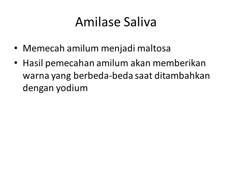 Amilase Saliva Memecah amilum menjadi maltosa