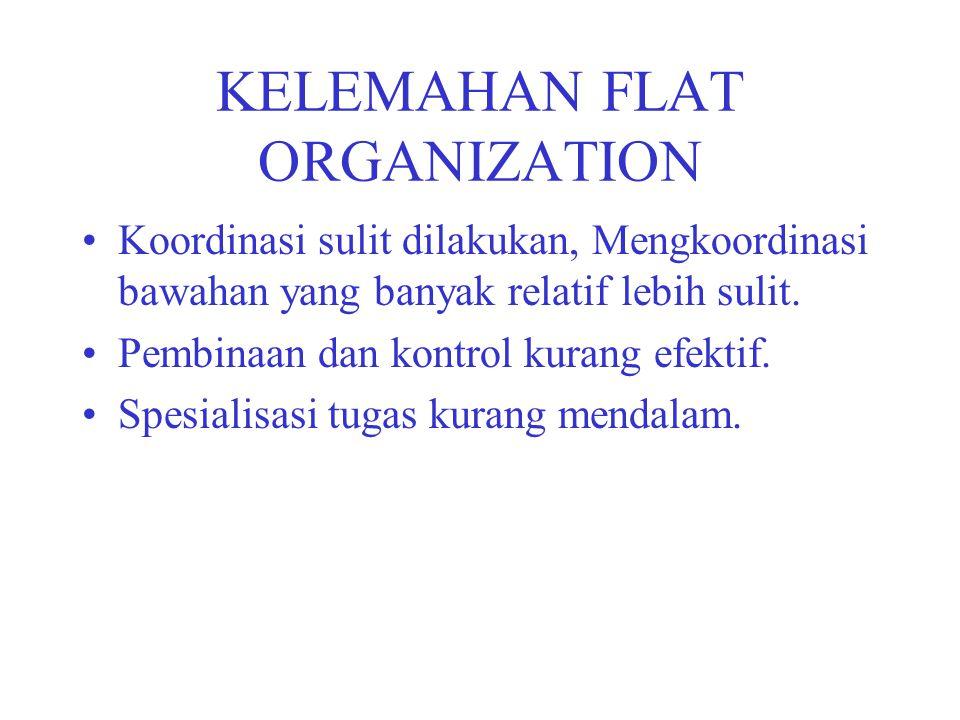 KELEMAHAN FLAT ORGANIZATION