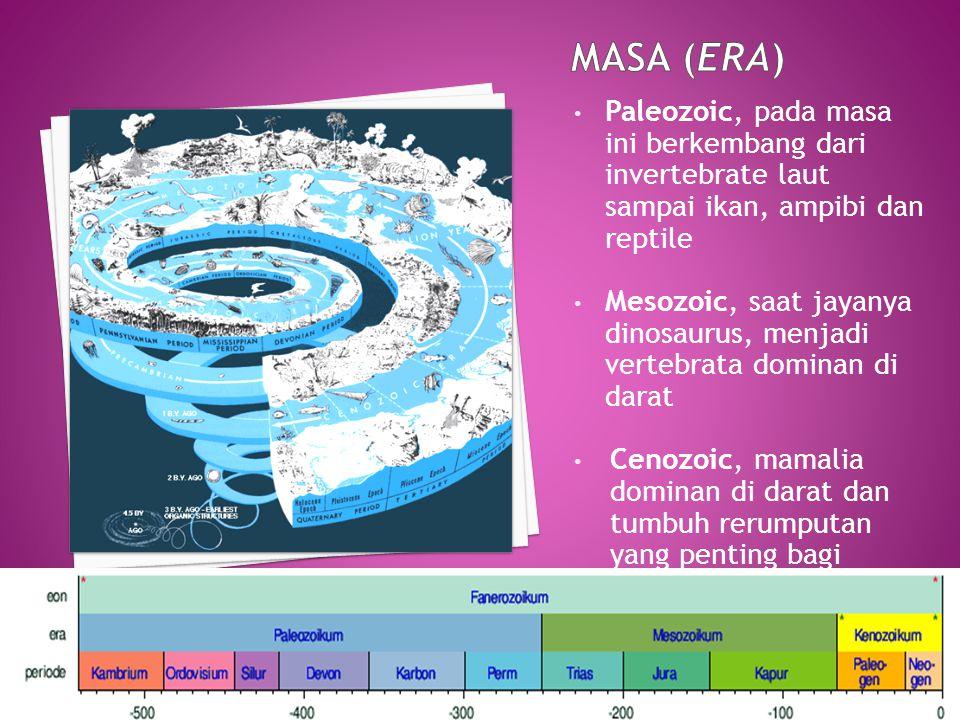 MASA (Era) Paleozoic, pada masa ini berkembang dari invertebrate laut sampai ikan, ampibi dan reptile.