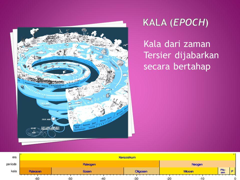 KALA (Epoch) Kala dari zaman Tersier dijabarkan secara bertahap