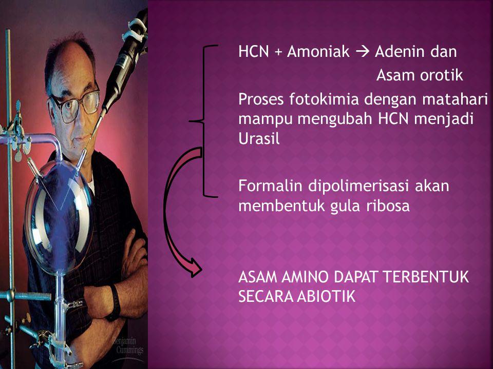HCN + Amoniak  Adenin dan