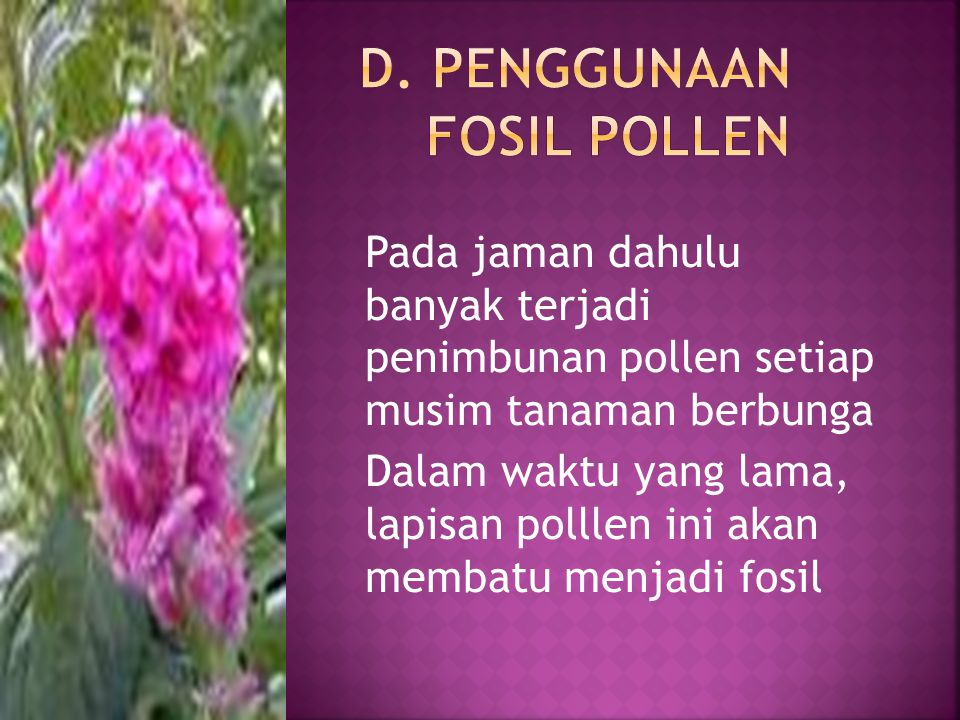 D. Penggunaan fosil pollen