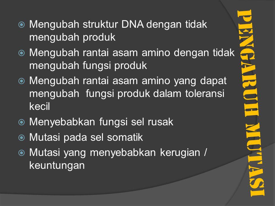 PENGARUH MUTASI Mengubah struktur DNA dengan tidak mengubah produk