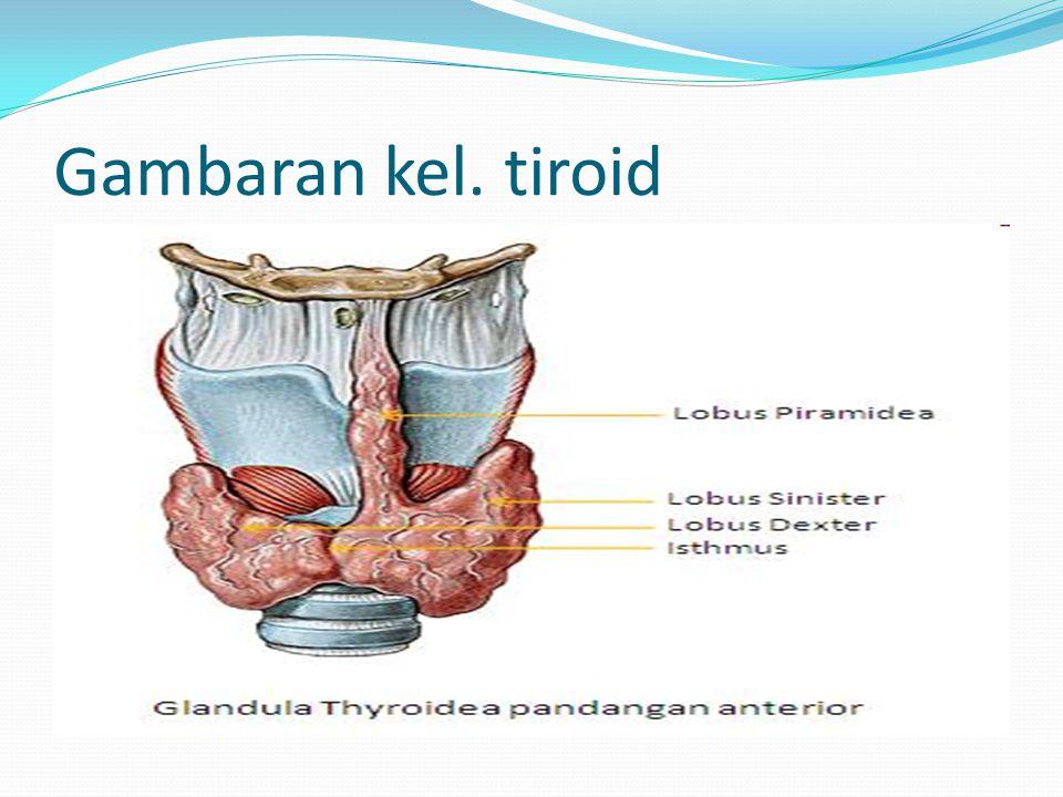 Gambaran kel. tiroid