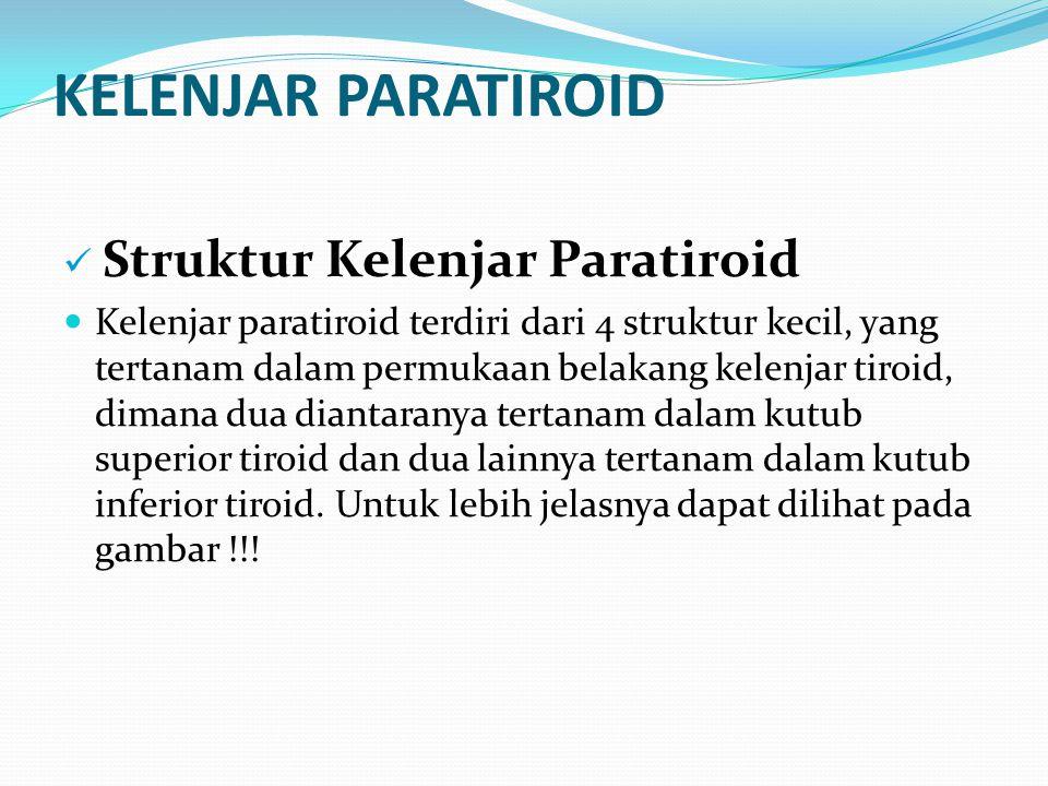 KELENJAR PARATIROID Struktur Kelenjar Paratiroid