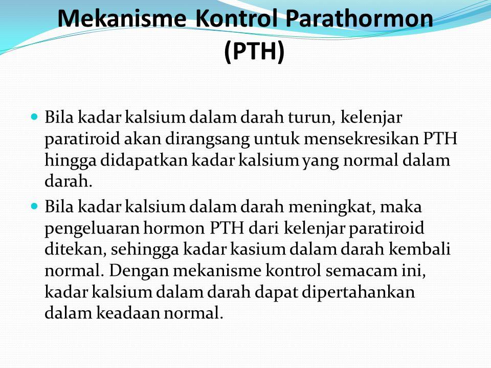Mekanisme Kontrol Parathormon (PTH)