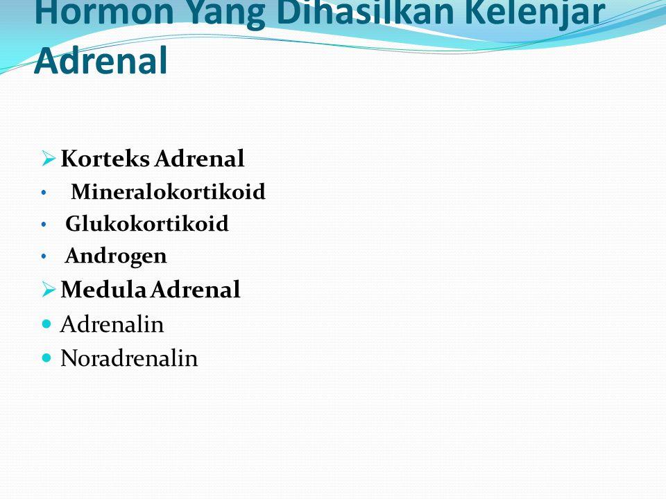 Hormon Yang Dihasilkan Kelenjar Adrenal