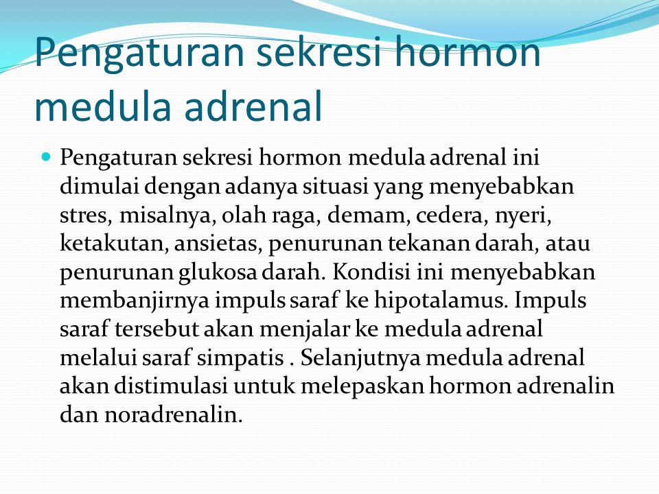 Pengaturan sekresi hormon medula adrenal