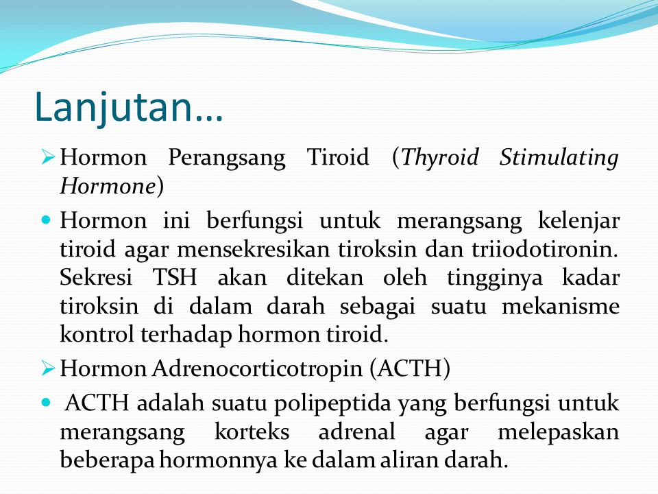 Lanjutan… Hormon Perangsang Tiroid (Thyroid Stimulating Hormone)