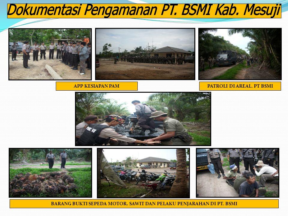 Dokumentasi Pengamanan PT. BSMI Kab. Mesuji