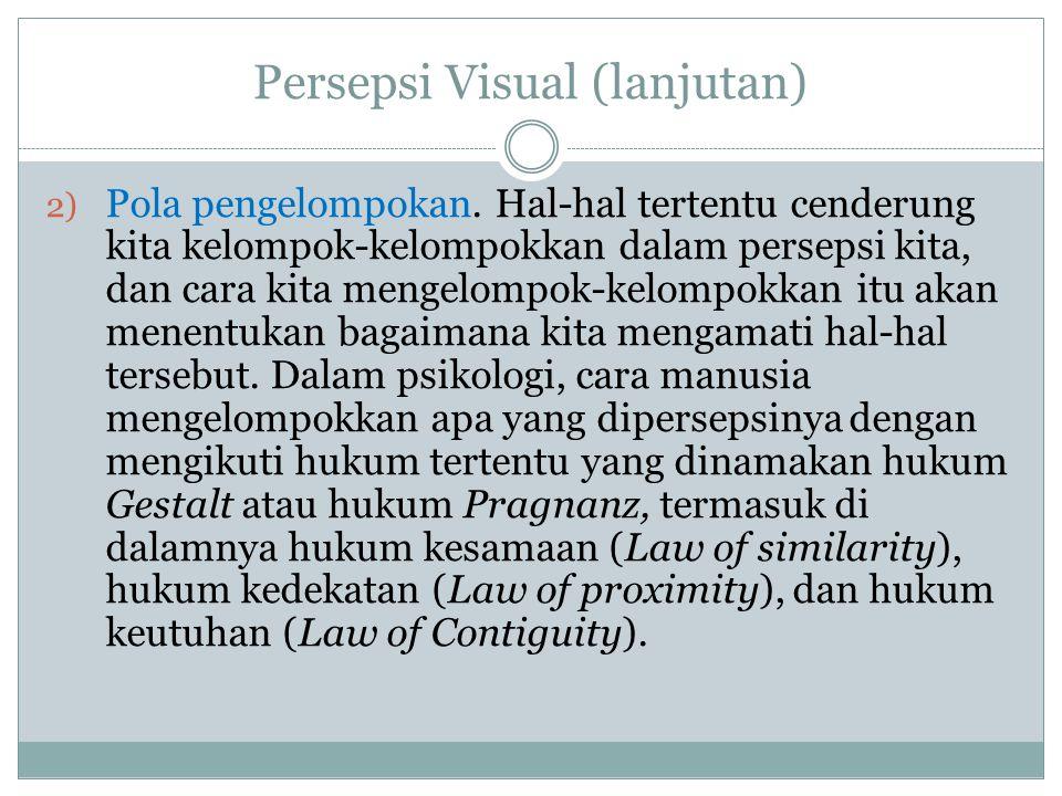 Persepsi Visual (lanjutan)