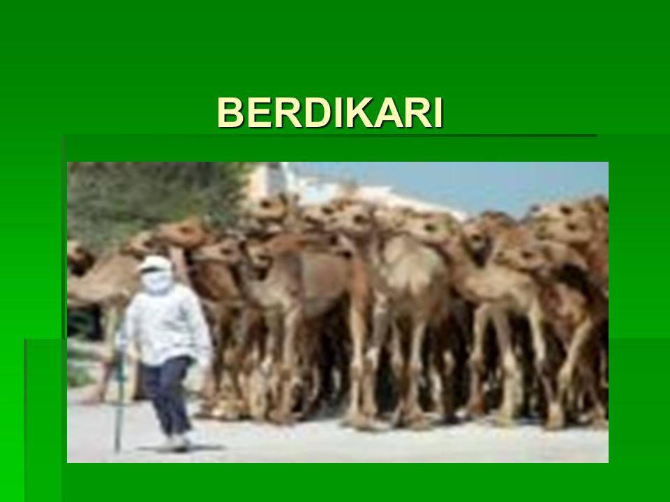 BERDIKARI