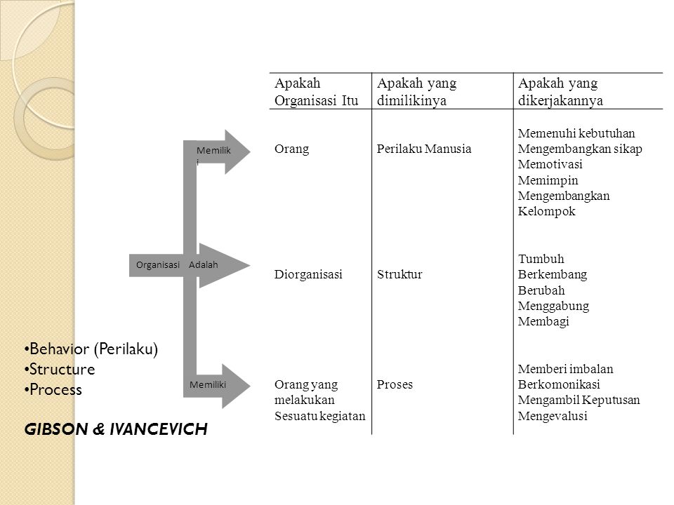 Behavior (Perilaku) Structure Process GIBSON & IVANCEVICH