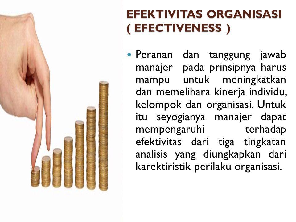 EFEKTIVITAS ORGANISASI ( EFECTIVENESS )